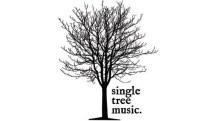 single tree music