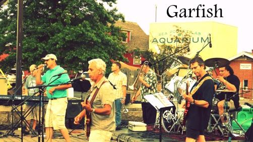 garfish-ff.jpg hlnew