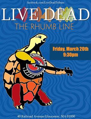 live dead turtle
