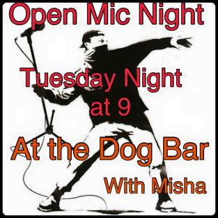 opn mic dog bar.jpg